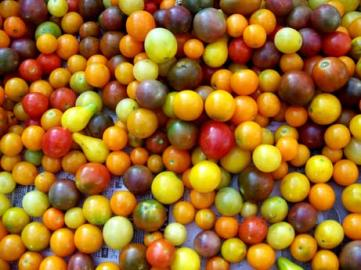 tomatoemarbles