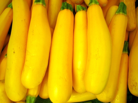 summer-squash-puree-vitamix-recipe